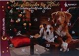 Adventskalender für Hunde Leckerli getreidefrei